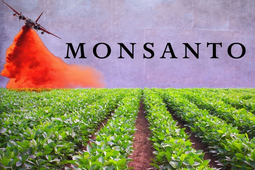 monsanto essay This paper tells that monsanto produces a variety of genetically modified agricultural products and focuses on advancing gmo technology to improve anoutput.